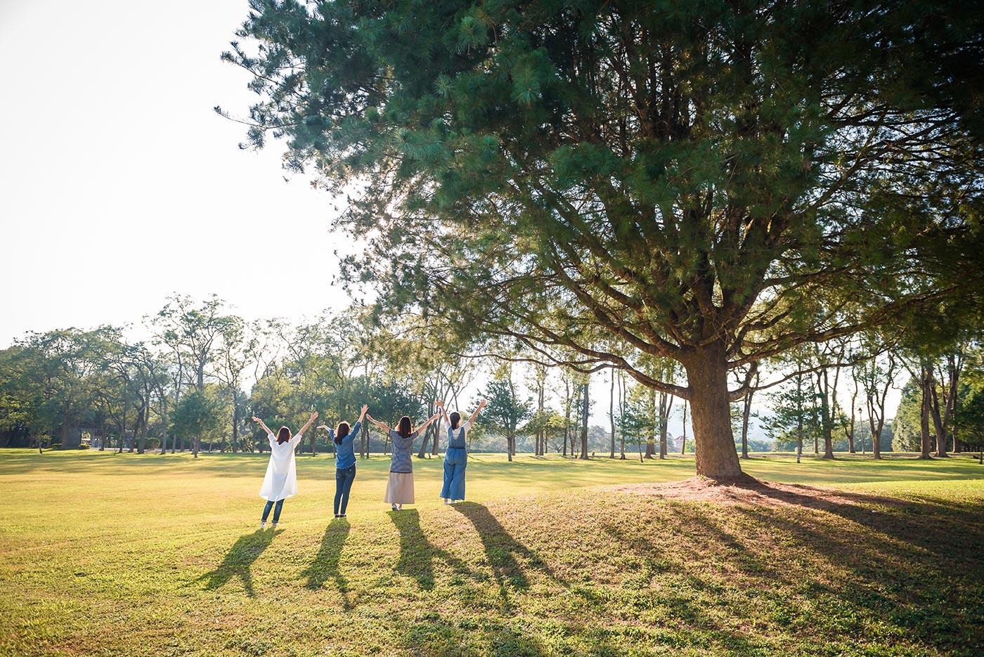 親子旅遊攝影 旅遊寫真 閨蜜寫真 三育基督學院 大樹下光影